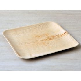 "Areca Leaf Square Disposable Plates 10x10"" - Pack of 100"