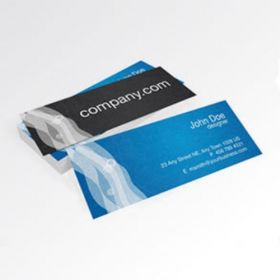 Back To Back Slim Business Card 2(100 Cards)