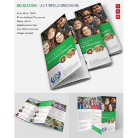 A3 Small Trifold Brochures(10 Brochures)