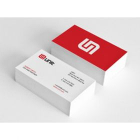 Back To Back Slim Business Card 1(100 Cards)