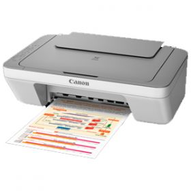 Canon Pixma Mg2470 All-In-One Inkjet Printer  (Grey, White)