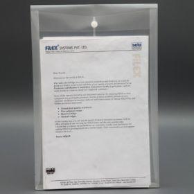 Document Bag, Pack of 10 Pcs (CH117)