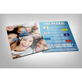 Double-Sided A4 Flyers (210Mm X 297Mm)(100 Pcs)