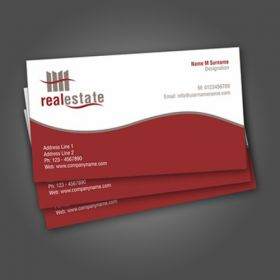 Single Sided Slim Business Card 2(100 Cards)